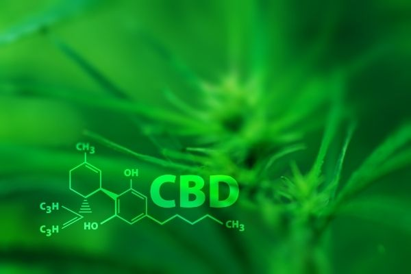 CBD comes in a variety of products